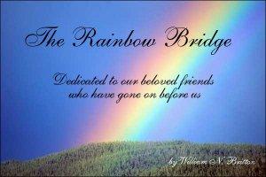 rainbowbridge1